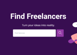What is Freelancer?