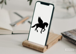 What is Pegasus?